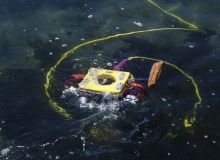 ROV demo with worldfish.org